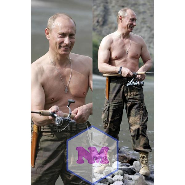 Дакимакура Путин 1